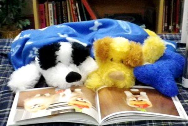 Stuffed animal Sleepover.jpg